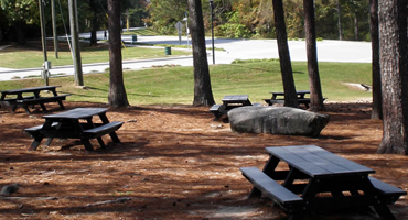 Stone Mountain Park Picnic Areas