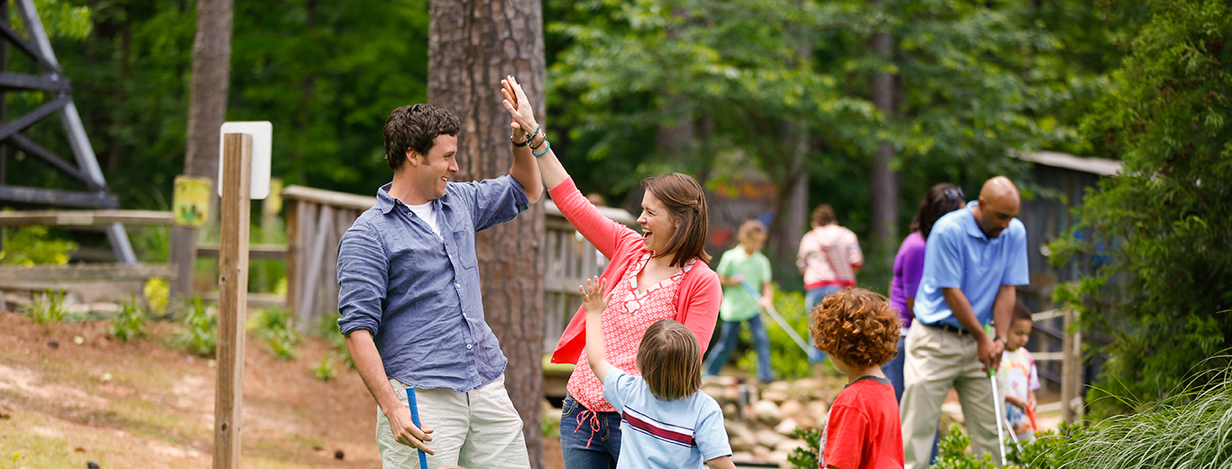 Stone Mountain Park Family High Five