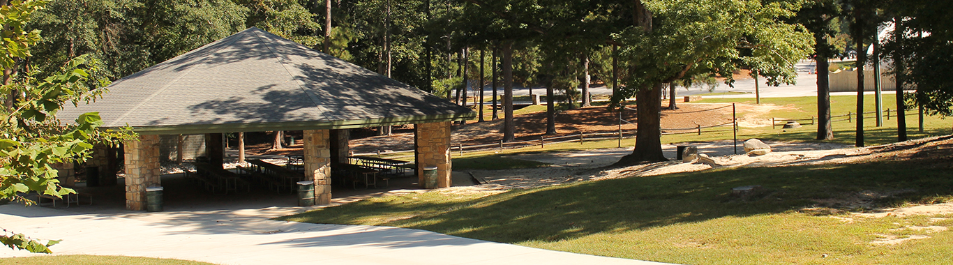 Twin Oaks Pavilion at Stone Mountain Park