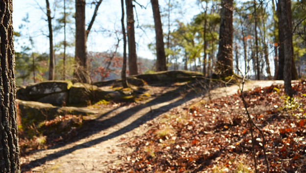 Walking Trails at Stone Mountain Park